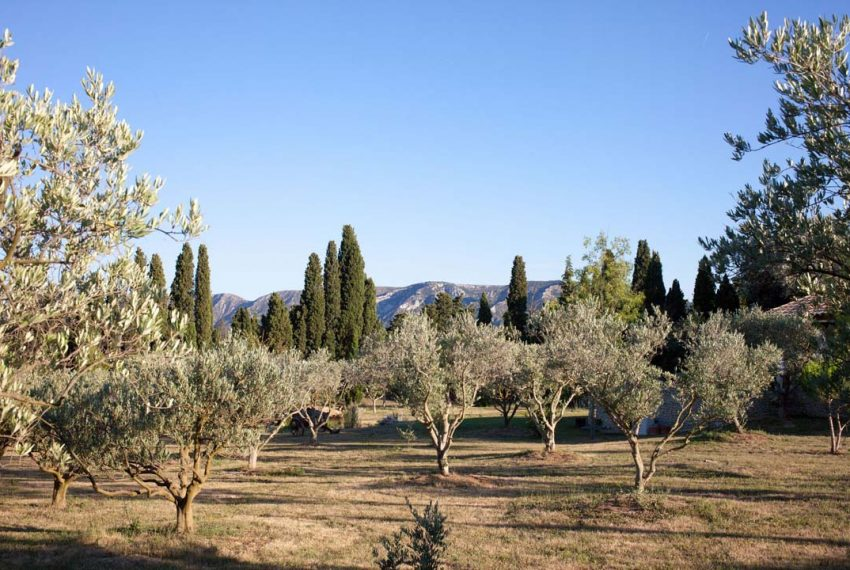 00022french-luxury-property-for-sale-in-Provence